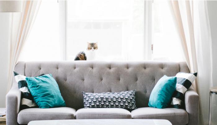 make home insight brighter