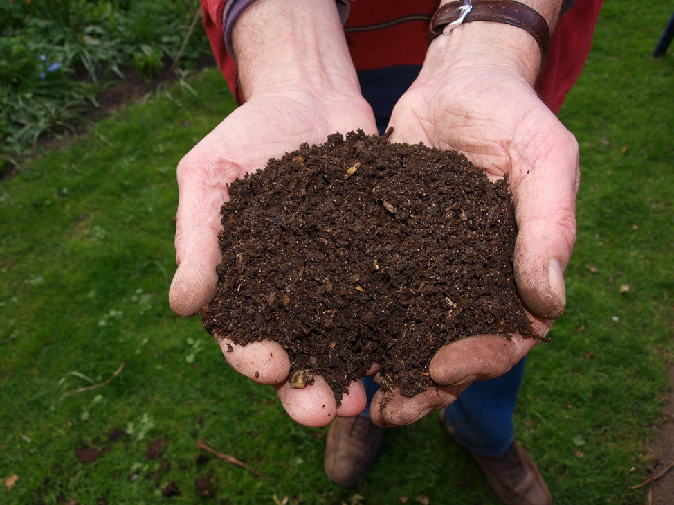 Here's Why You Should Be Making Your Own Compost for Your Garden